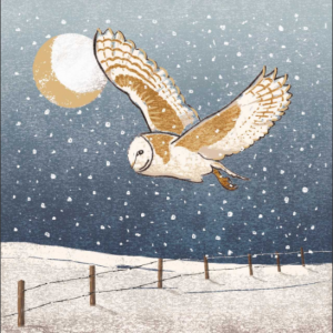 British Red Cross - Moonlit Flight Charity Christmas Card